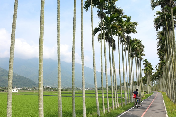 台湾・台東「關山自行車道」